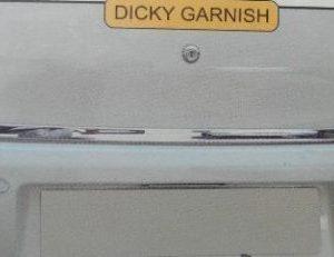 Listwa chromowana do Dacia Sandero I
