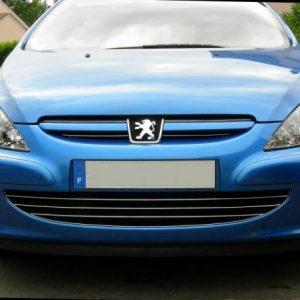 Peugeot 307 HB, SW listwy chrom