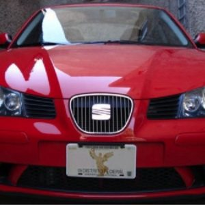 Seat Ibiza listwy chromowane